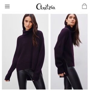 WILFRED FREE | Aritzia Turtleneck Lin Yarn